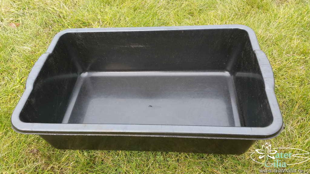 Купить емкость, контейнер для нимфей 20 литров прямоугольная