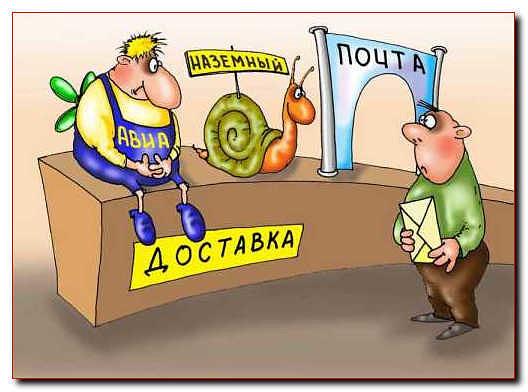Отправка нимфей по России